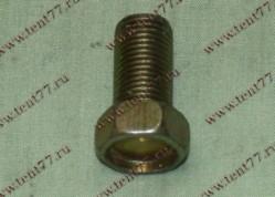 Болт М12*1,25 *22 суппорта Газель 3302,гл. пары УАЗ
