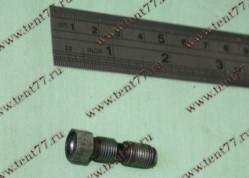 Винт регулиров. клапанов двигатель 4216 ЕВРО-4,EvoTech 2.7 (под гидрокомпенсатор)