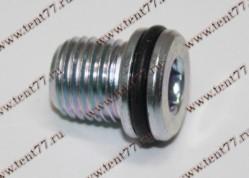Пробка картера масл. (поддона) двигатель EvoTech 2.7 (под шестигр) в сборе (с упл.кольцом)
