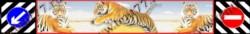 Брызговик бруса заднего Газель 3302  длинномер  (2050x320мм)  Тигры